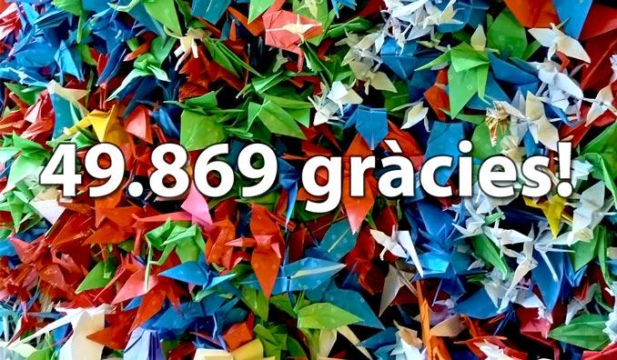 49869 gracies